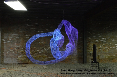 Sunil Garg, Title: Sleep Fragment # 1, Steel wire mesh, programmed LED lights, objects