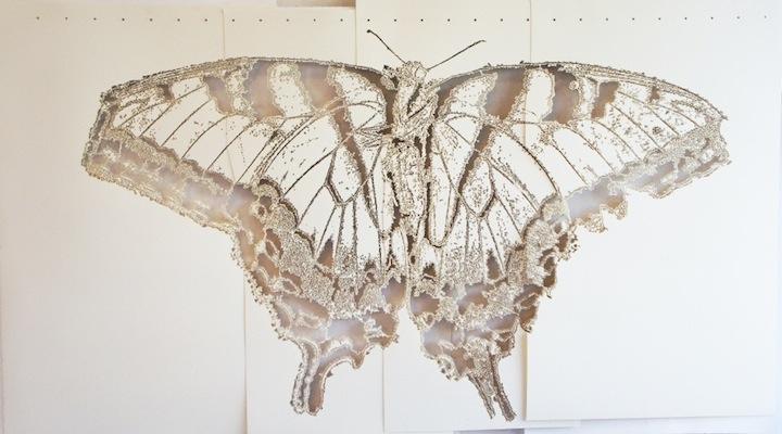 Blake M Conroy #1 Swallowtail Paper(cut) H21xW58 2014